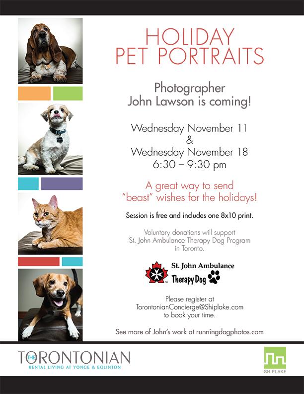 Shiplake - Torontonian Pet Portraits LR